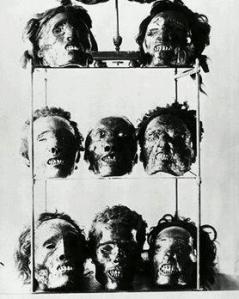 musee-de-lhomme