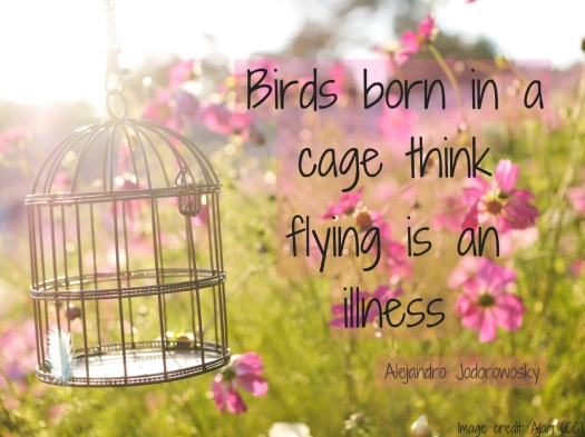 Birds born in a cage think flying is an illness (1).jpg