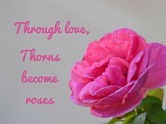 Through love, thorns become roses.jpg